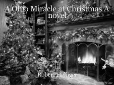 A Ohio Miracle at Christmas A novel