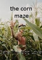 the corn maze