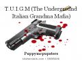 T.U.I.G.M (The Underground Italian Grandma Mafia)