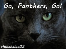 Go, Panthers, Go!