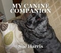 MY CANINE COMPANION