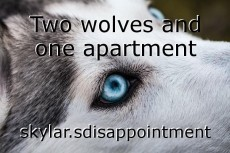 Two wolves and one apartment