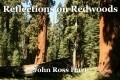 Reflections on Redwoods