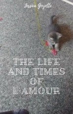 The Life and Times of L'Amour