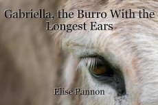 Gabriella, the Burro With the Longest Ears
