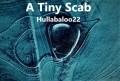 A Tiny Scab