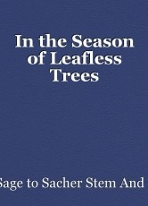 In the Season of Leafless Trees