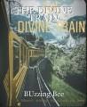 THE DIVINE TRAIN