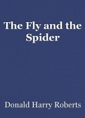 The Fly and the Spider