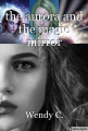 the aurora and the magic mirror