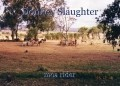 Donkey Slaughter