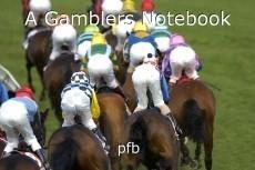 A Gamblers Notebook