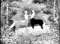 The Centaurs Genesis