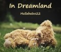 In Dreamland