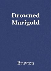Drowned Marigold