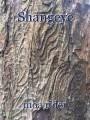 Shangeye