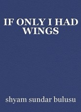 IF ONLY I HAD WINGS