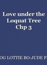 Love under the Loquat Tree Chp 3