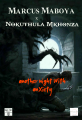 Another Night With Anxiety (Feat. Nokuthula Mkhonza)