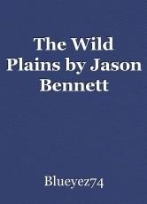The Wild Plains by Jason Bennett