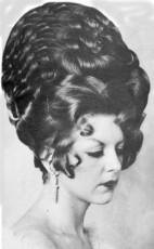 The Hair-Born Princess