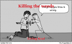 Killing the weeds