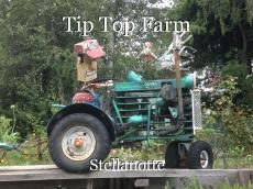 Tip Top Farm