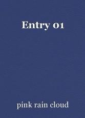 Entry 01