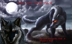 The Last Wolf Pack