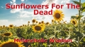 Sunflowers For The Dead