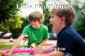 Little Red Picnic