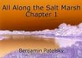 All Along the Salt Marsh Chapter 1