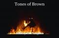 Tones of Brown