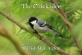 The Chickadee