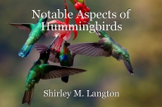 Notable Aspects of Hummingbirds