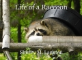Life of a Raccoon