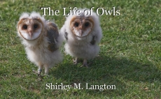 The Life of Owls