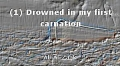 (1) Drowned in my first carnation