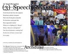 (3)  Speech Recognition