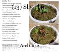 (13) Shy Plant