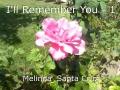 I'll Remember You - 1
