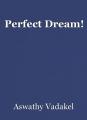 Perfect Dream!