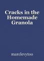 Cracks in the Homemade Granola