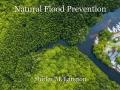 Natural Flood Prevention