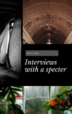 Recluse: Interviews with a Specter