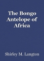 The Bongo Antelope of Africa