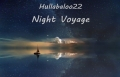 Night Voyage