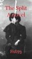 The Split A novel