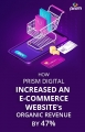 HOW PRISM DIGITAL INCREASED AN ECOMMERCE SITE'S ORGANIC REVENUE BY 47%