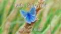 Lady Butterfly*